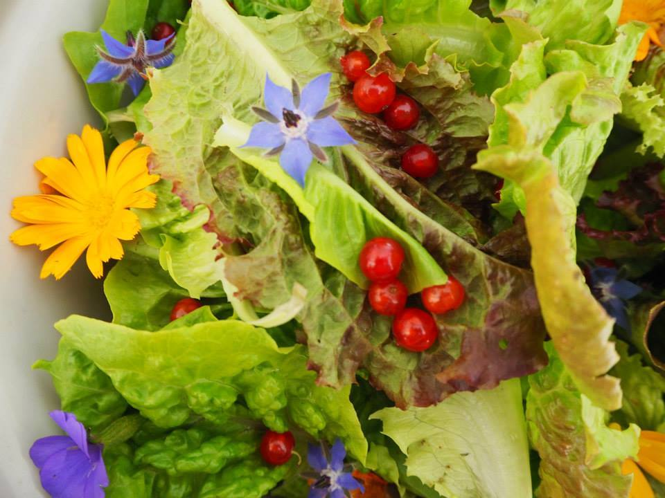 Fresh food the basis for good health and happiness